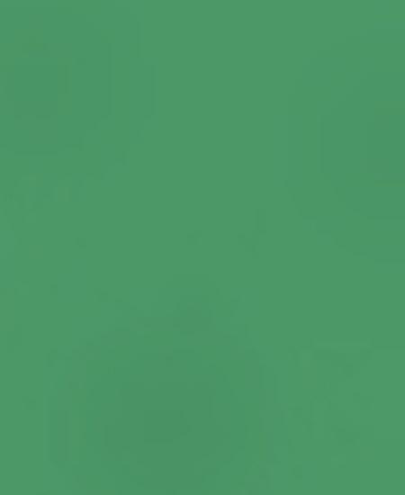 Wechselteil wildgreen